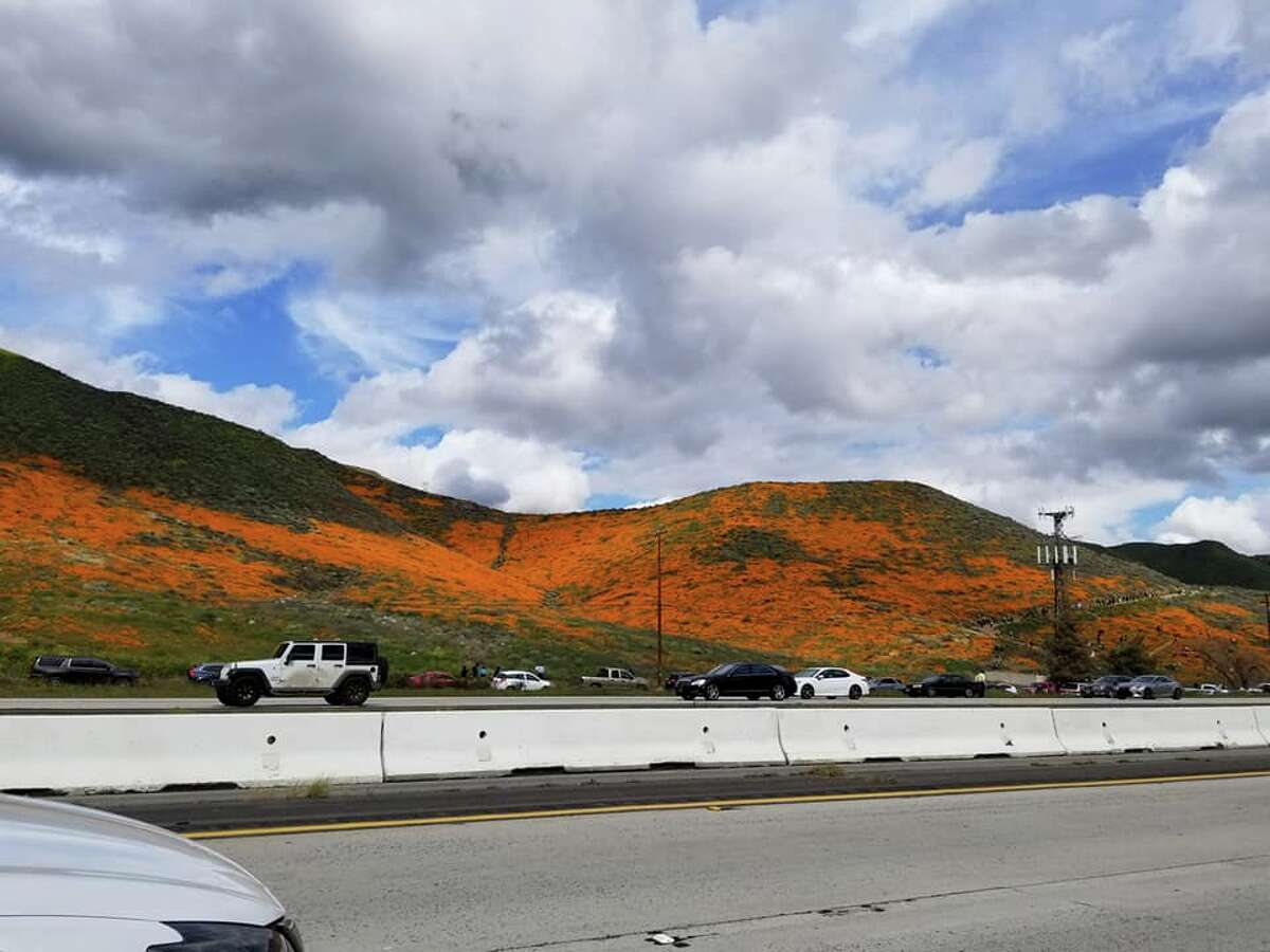 Poppy jam: Thousands are flocking to the poppy display along Interstate 15 near Lake Elsinore, Calif. The image was taken on March 3, 2019, off the exit at Lake Street.
