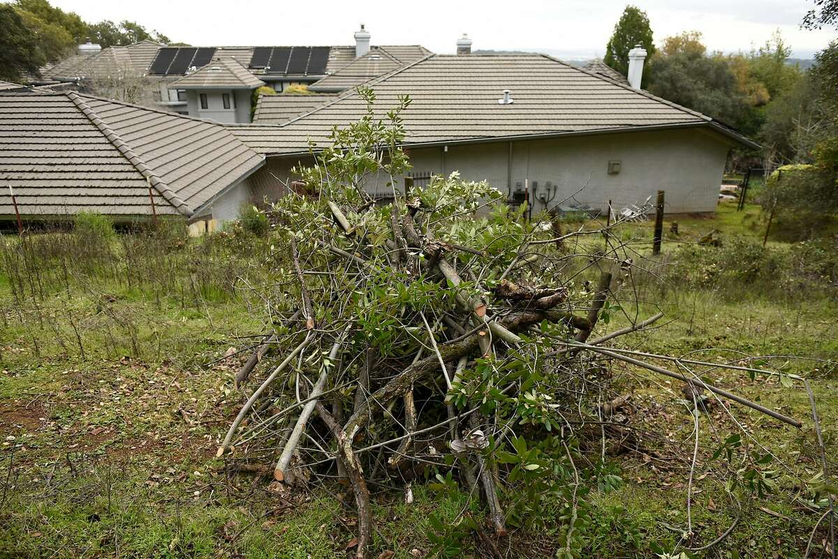 A pile of underbrush sits next to a home as a Cal Fire fuel reduction crew work clearing brush on Vallejo Water District land in Fairfield, Calif., on Monday February 25, 2019.