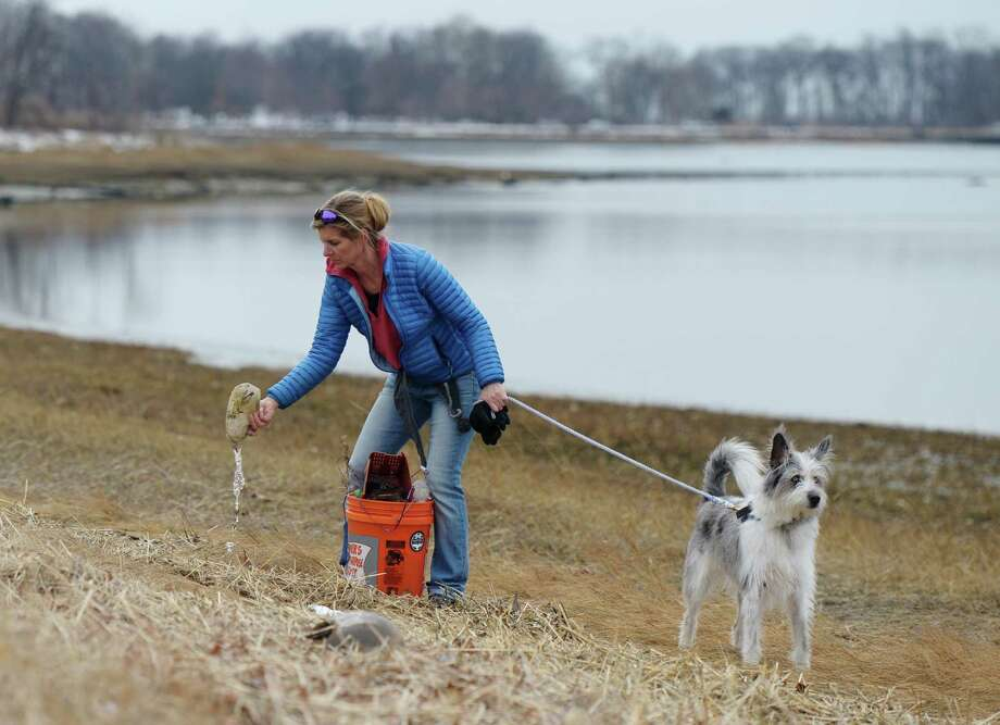 Greenwich's Christine Sweeney finds a plastic bottle while collecting trash with her dog, Blue, at the Greenwich Point Park Cleanup in Old Greenwich, Conn. Sunday, March 3, 2019. Skip the Straw Greenwich, Surfrider Foundation CT and BYOGreenwich helped organize the event and bring together hundreds of volunteers to comb through Tod's Point in search of trash. Volunteers collected garbage and left it at transfer sites around the park where it was picked up at the end of the two hours of collection to be weighed and sorted. Photo: Tyler Sizemore / Hearst Connecticut Media / Greenwich Time