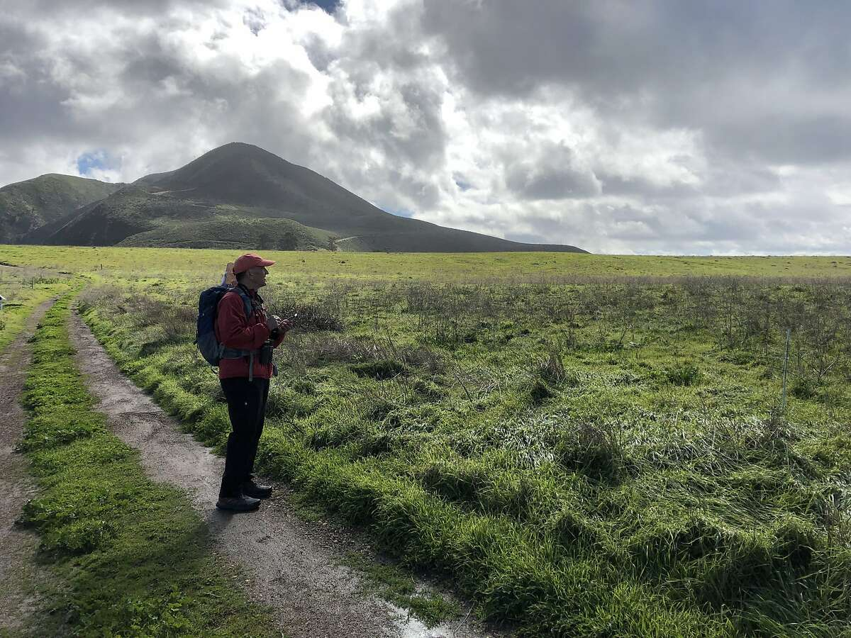 The author admires the landscape beside PG&'s Point Buchon Trail, just south of Monta�a de Oro State Park.