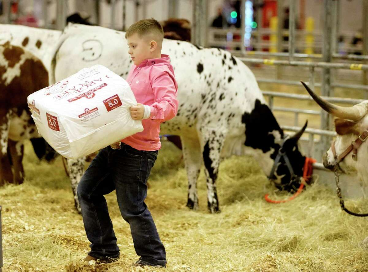Caden Grace, 7 of Sunset loads bags of shavings as he helps pack up after showing with his family's company Longhorn Grace Cattle at the NRG Center during the Houston Livestock Show & Rodeo Tuesday, March 5, 2019, in Houston.