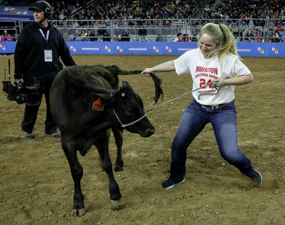 Ashilyn Cartwright pulls a calf during the calf scramble at the Houston Livestock Show and Rodeo Tuesday, March 5, 2019, in Houston.