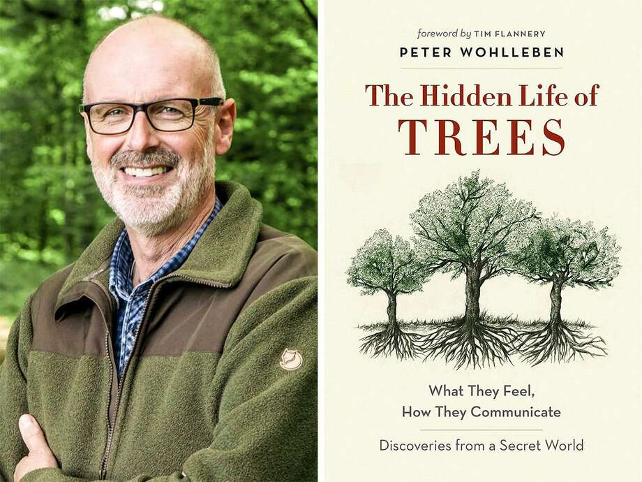 "Peter Wohlleben, author of ""The Hidden Life of Trees,"" will give a talk at the Greenwich Library Cole Auditorium at 6:30 p.m. March 12. His research is well known and groundbreaking, with Smithsonian Magazine saying, ""Trees are far more alert, social, sophisticated—and even intelligent—than we thought."" Doors will open and refreshments will be served at 6:30 p.m., with the presentation at 7 p.m., followed by a Q&A and book signing. Photo: Contributed /"