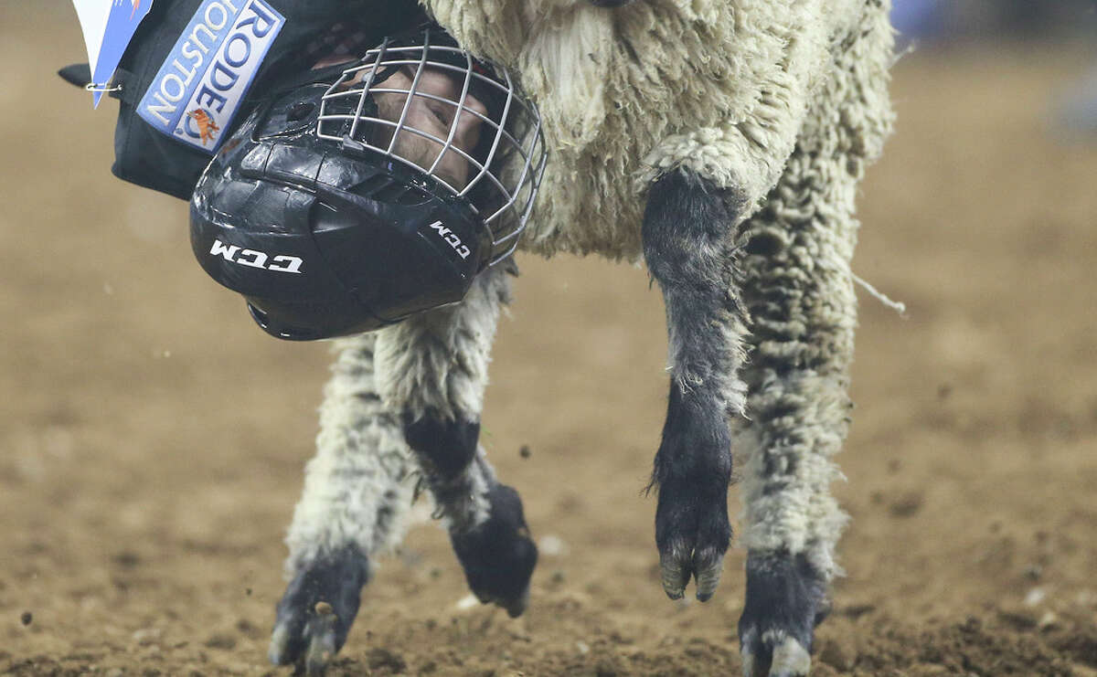 Jay Martinets, 6, holds on tight to his sheep during prime-time Mutton Bustin at RodeoHouston at NRG Stadium on Wednesday, March 6, 2019.