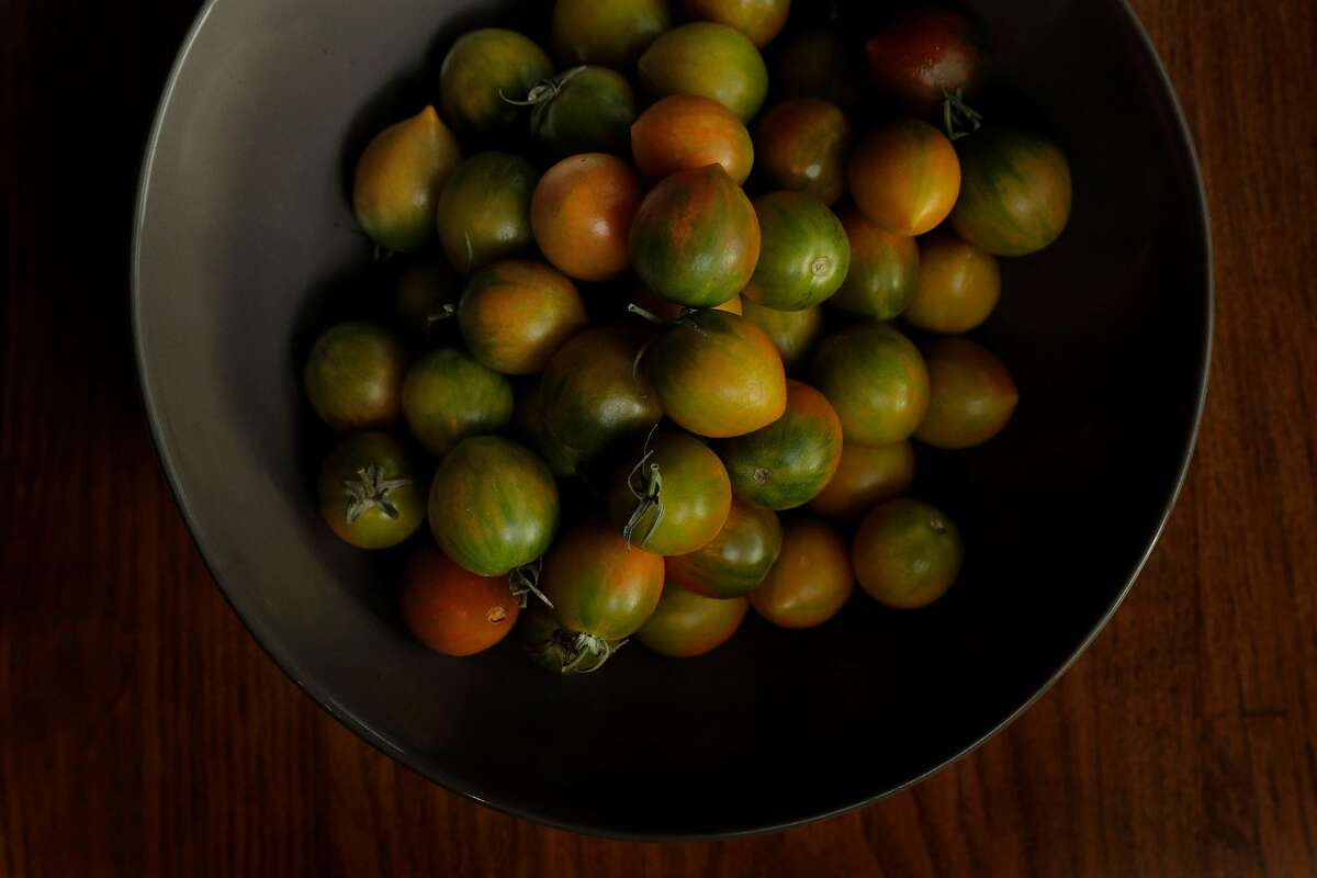 The Green Bee tomato an experimental tomato developed by a local farmer and served by Sabio in Pleasanton,, Calif., on Thursday, January 17, 2019.