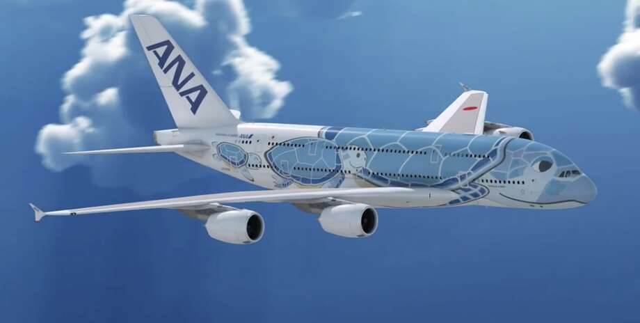This year ANA will use a special sea turtle livery on its A380s flying between Japan and Hawaii Photo: ANA