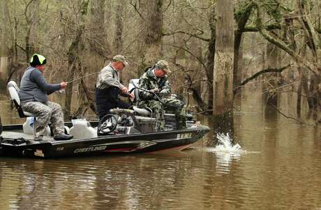 Double hook-ups are not uncommon when anglers locate schools of white bass congregated in small areas along flooded creeks and channels of the upper Sabine River, arguably Texas' premier fishery for both quality and quantity of spawning-run white bass.