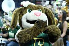 """The Siena Saints mascot Bernie the """"Saint"""" Bernard is seen during a Metro Atlantic Athletic Conference NCAA semifinal basketball game against against the Iona Sunday, March 10, 2019, in Albany, N.Y. Iona won 73-57."""