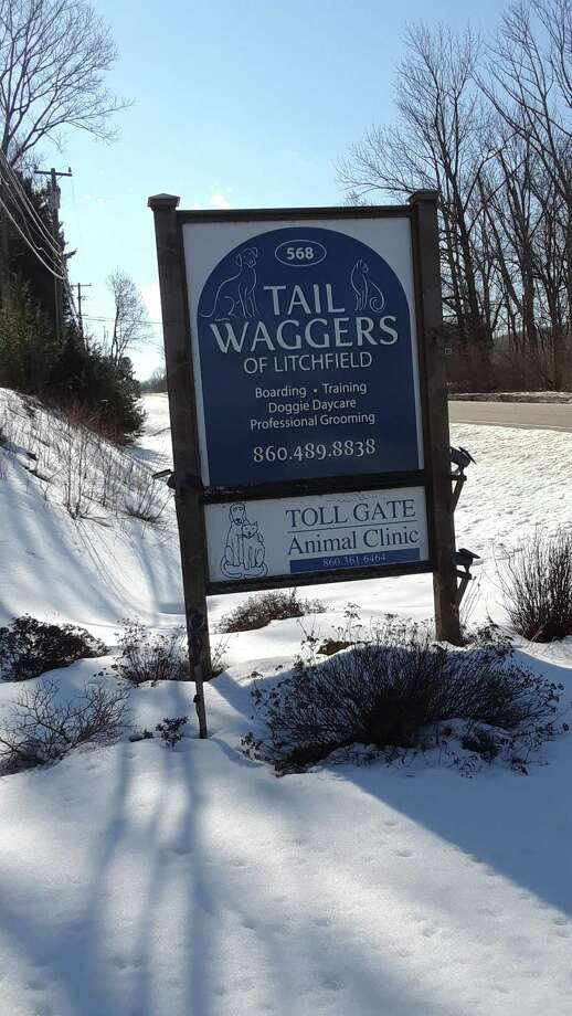 Tail Waggers kennel and dog day care is open, while the Toll Gate Veterinary Clinic closed down Monday. Photo: Emily M. Olson / Hearst Connecticut Media /
