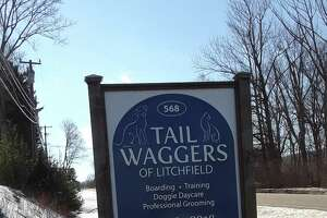 Tail Waggers kennel and dog day care is open, while the Toll Gate Veterinary Clinic closed down Monday.