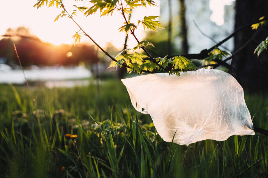 Albany County wants to join a growing number of governments across the state and country that are banning single-use plastic bags to reduce the amount of plastic that winds up in landfills and oceans. Photo: Stock Photo Courtesy Of Pexels.com.