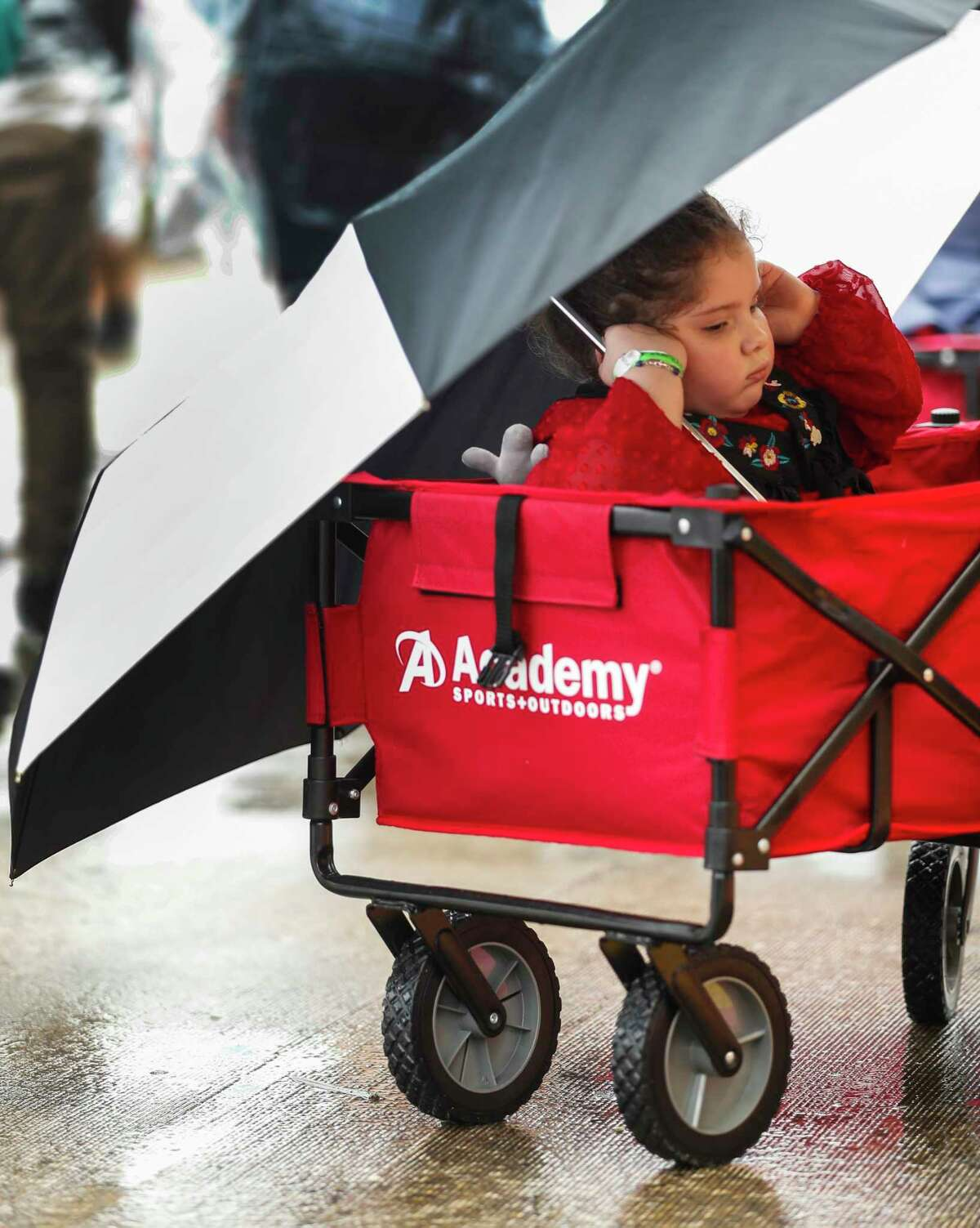 Lola Shelly, 4, covers up against the rain as she road in a cart with her family during the Houston Livestock Show and Rodeo at NRG Park, Wednesday, March 13, 2019, in Houston.