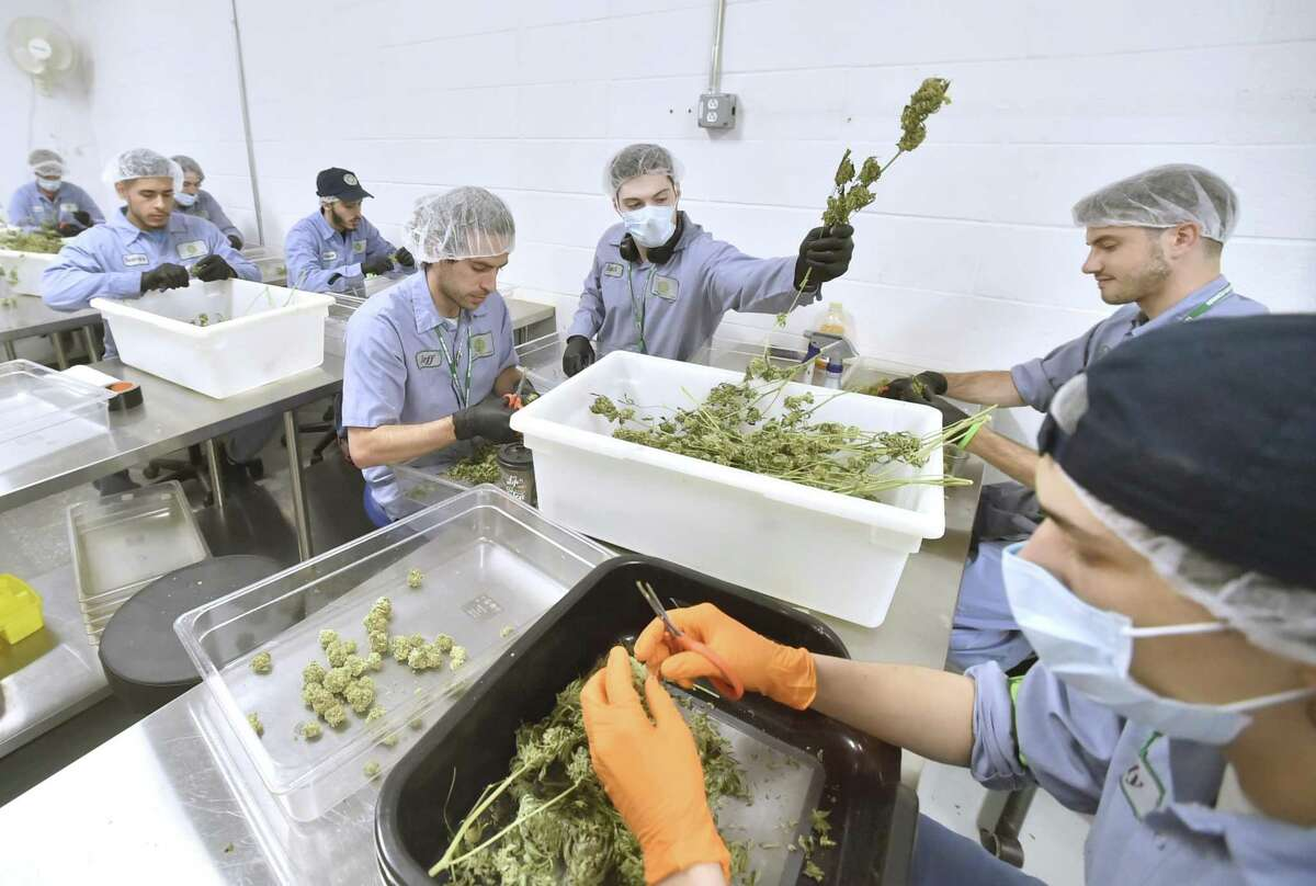 Advanced Grow Labs' production team is shown in a 2018 file photo.