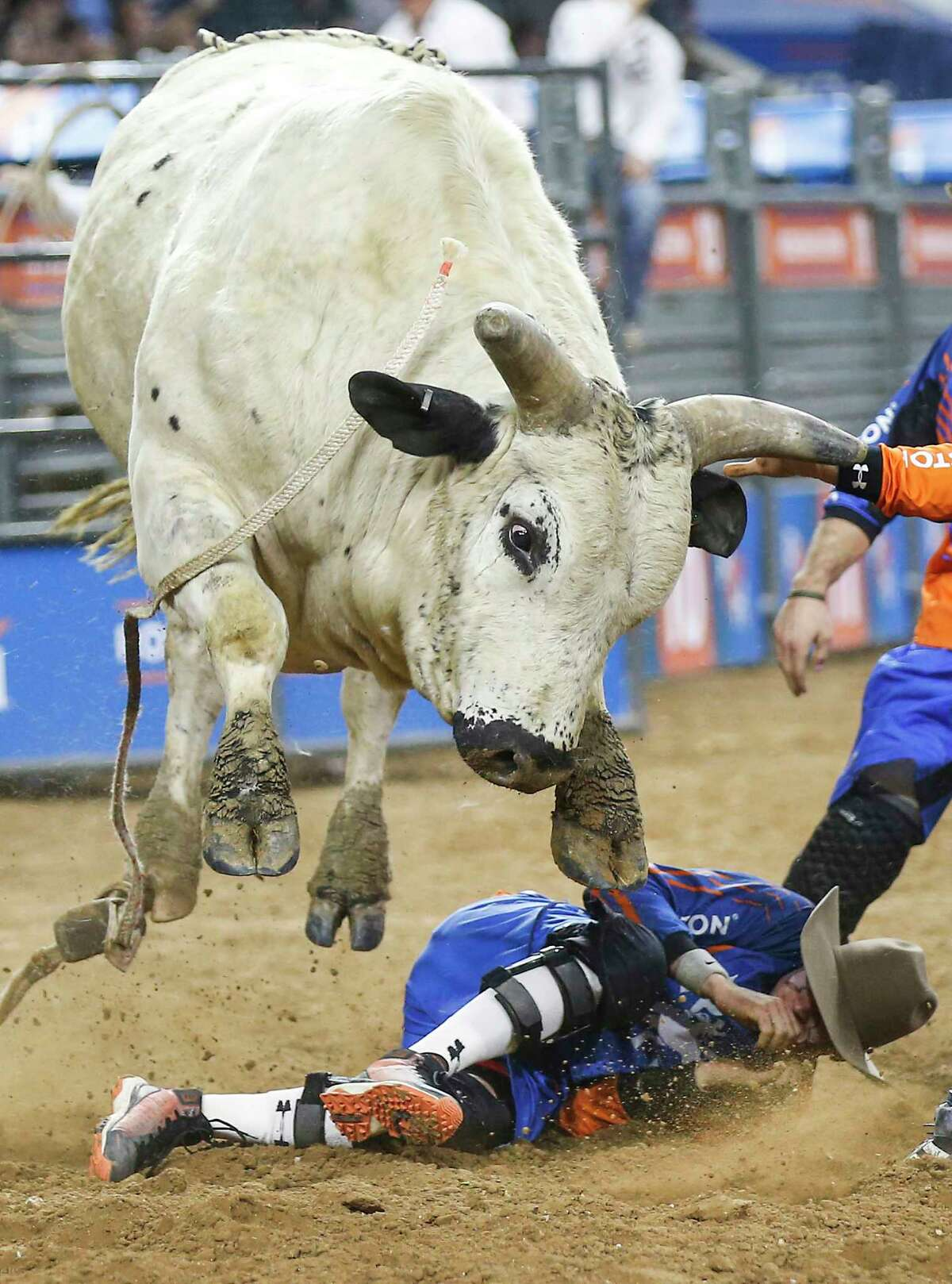 Hambone leaps over bullfighter Cody Webster after Trevor Kastner's ride during RodeoHouston Semifinal 2 at NRG Stadium on Thursday, March 14, 2019, in Houston.