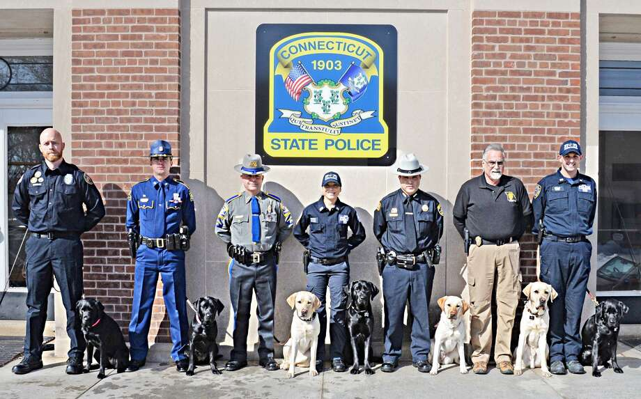 The Connecticut State Police K9 Unit graduated its 200th K9 Training Troop Friday. Seven K9 Teams from throughout the United States now specialize in electronic storage device detection. From left are Officer Dennis Hinkson and canine Officer Pauline, state Department of Corrections Trooper Tommy Bellue and Maggie, Louisiana State Police Det. David Aresco and Dora, CSP Officer Anel Heredia and Hugh, New York City Police Counter Terrorism Investigator John Hyla and Hannah, and Putnam County Sheriff's Department NY Investigator Cory Stoff and Ike. Photo: Contributed Photo