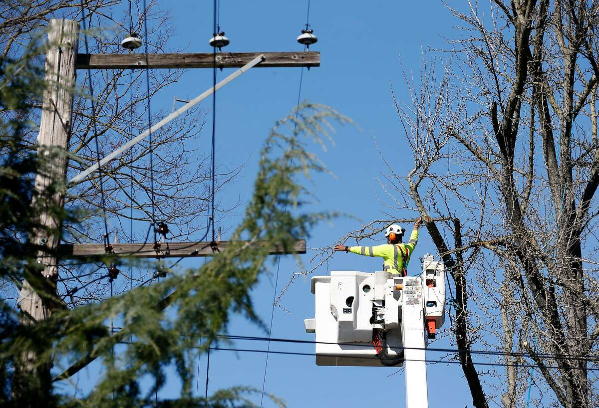A private tree service contracted by the Sacramento Municipal Utility District trims branches encroaching on power lines on 22nd Street in Sacramento, Calif. on Friday, March 15, 2019. SMUD is one of the largest publicly operated electric utility companies in Northern California.