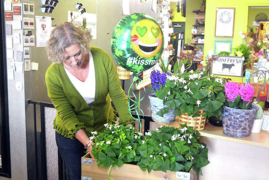 Deborah Orofino, co-owner of A Wildflower Shop, arranges shamrock flowers earlier this week ahead of St. Patrick's Day on Sunday. Orofino and Anne Morris operate the floral shop, located at 2131 State Rte. 157 in Edwardsville. Photo: Scott Marion | The Intelligencer