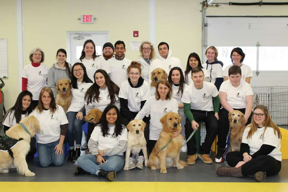 """In February, Students from NY's Pace University visited with Educated Canines Assisting with Disabilies' co-founder Lu Picard, ECAD instructors and volunteers, and Service Dogs in Training at the ECAD Canine Education and Wellness Center in Winchester. The students are enrolled in Pace's pioneering program for health care professionals, """"Canines Assisting in Health."""" ECAD and Picard have partnered with Pace in developing the curriculum. ECAD graduate, Facility Dog Spirit,(center) is a member of the Pace faculty and assists in teaching the classes. Photo: Contributed Photo"""