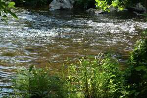 The west branch of the Naugatuck River upstream from the Brass Mill Dam preserve.