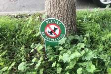 Various signs intended to deter dogs from doing their business dot my neighborhood.