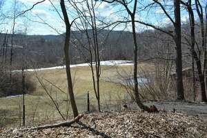 A proposal to build four buildings with 30 apartments each off Route 202 at the Litchfield town line has been submitted to the Inland Wetlands Commission.