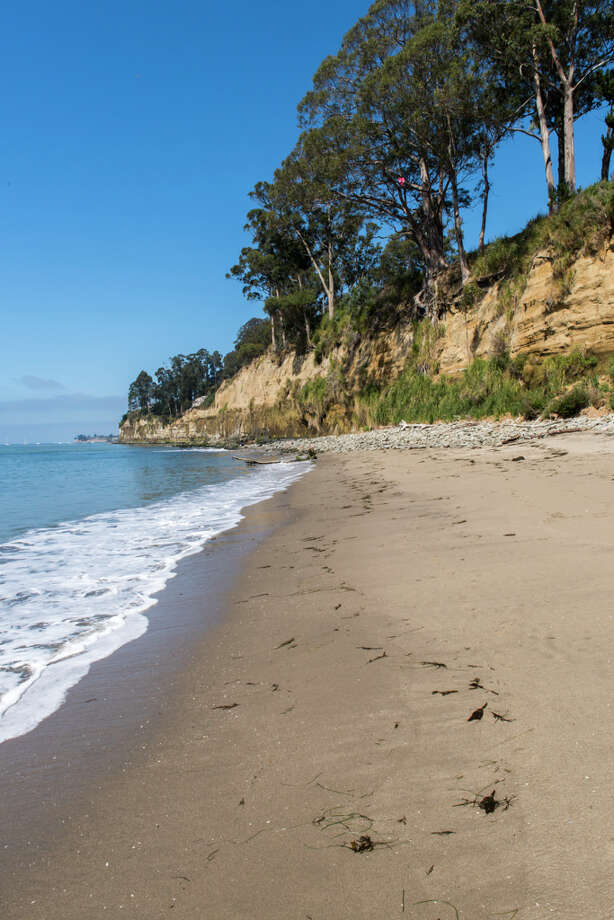 Bluffs overlook New Brighton State Beach in Santa Cruz County. Photo: Brian Baer ©2016, California State Parks / ©2016, California State Parks.