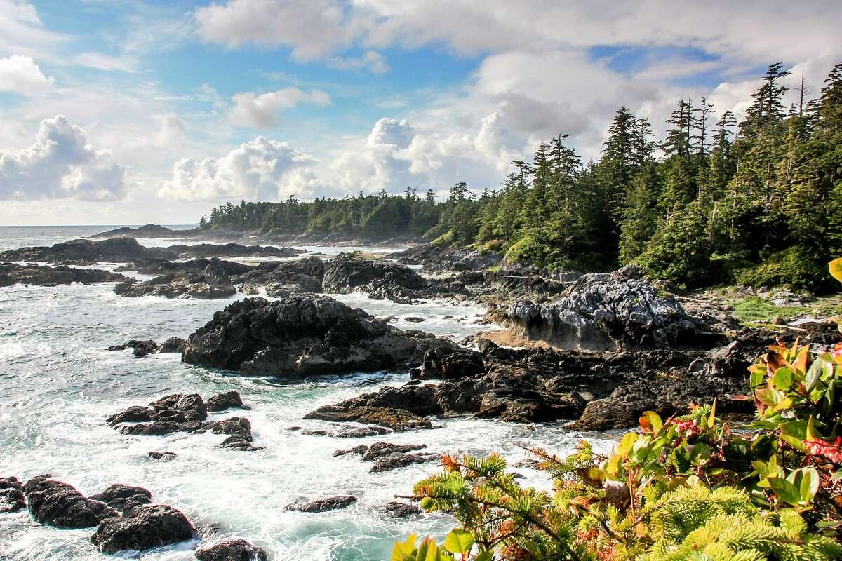 A rocky shore along the Wild Pacific Trail.