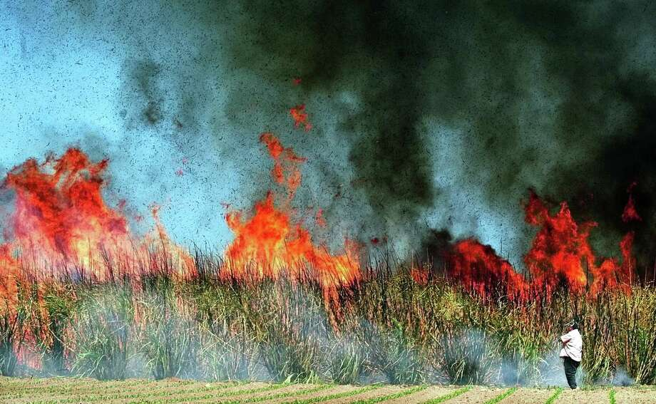 A wall of fire moves across a field of sugar cane as a worker watches to make sure the burn moves smoothly, March 8, 2004 south of San Benito, Texas. A reader writes of the health dangers burning these fields has on residents across the nation. Photo: RIC VASQUEZ /AP / VALLEY MORNING STAR