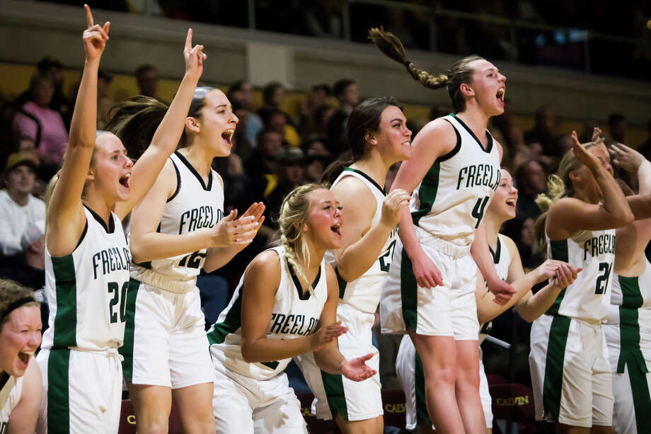 Freeland players cheer from the sidelines during the Falcons' 71-66 state semifinals victory over Hamilton on Friday, March 22, 2019 at Van Noord Arena in Grand Rapids. (Katy Kildee/kkildee@mdn.net) Photo: (Katy Kildee/kkildee@mdn.net)