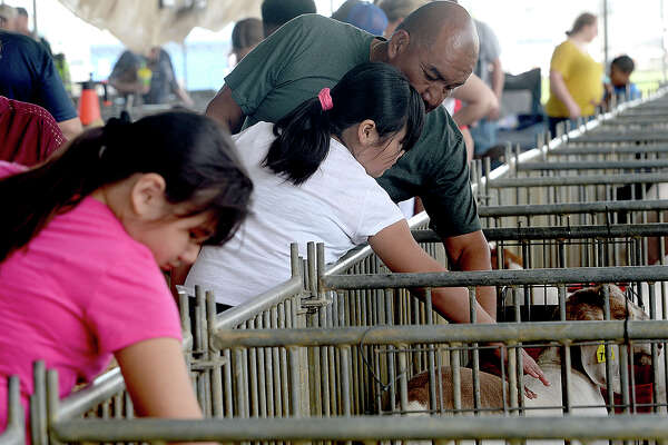 Fair-goers get some me-time with the 4-H animals at the YMBL South Texas State Fair Saturday. Photo taken Saturday, March 23, 2019 Kim Brent/The Enterprise