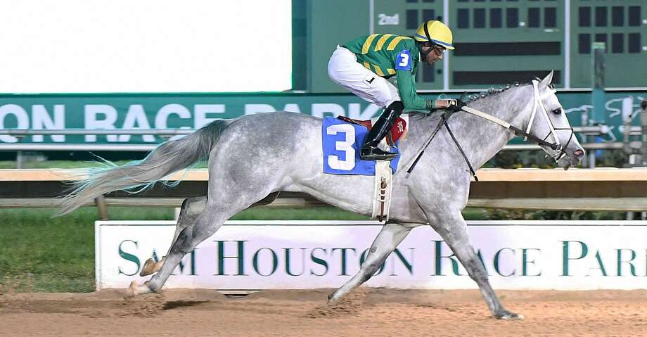 Direct Dial won The Spirit of Texas Stakes at Sam Houston Race Park on Saturday, March 23, 2019. Photo: Coady Photography