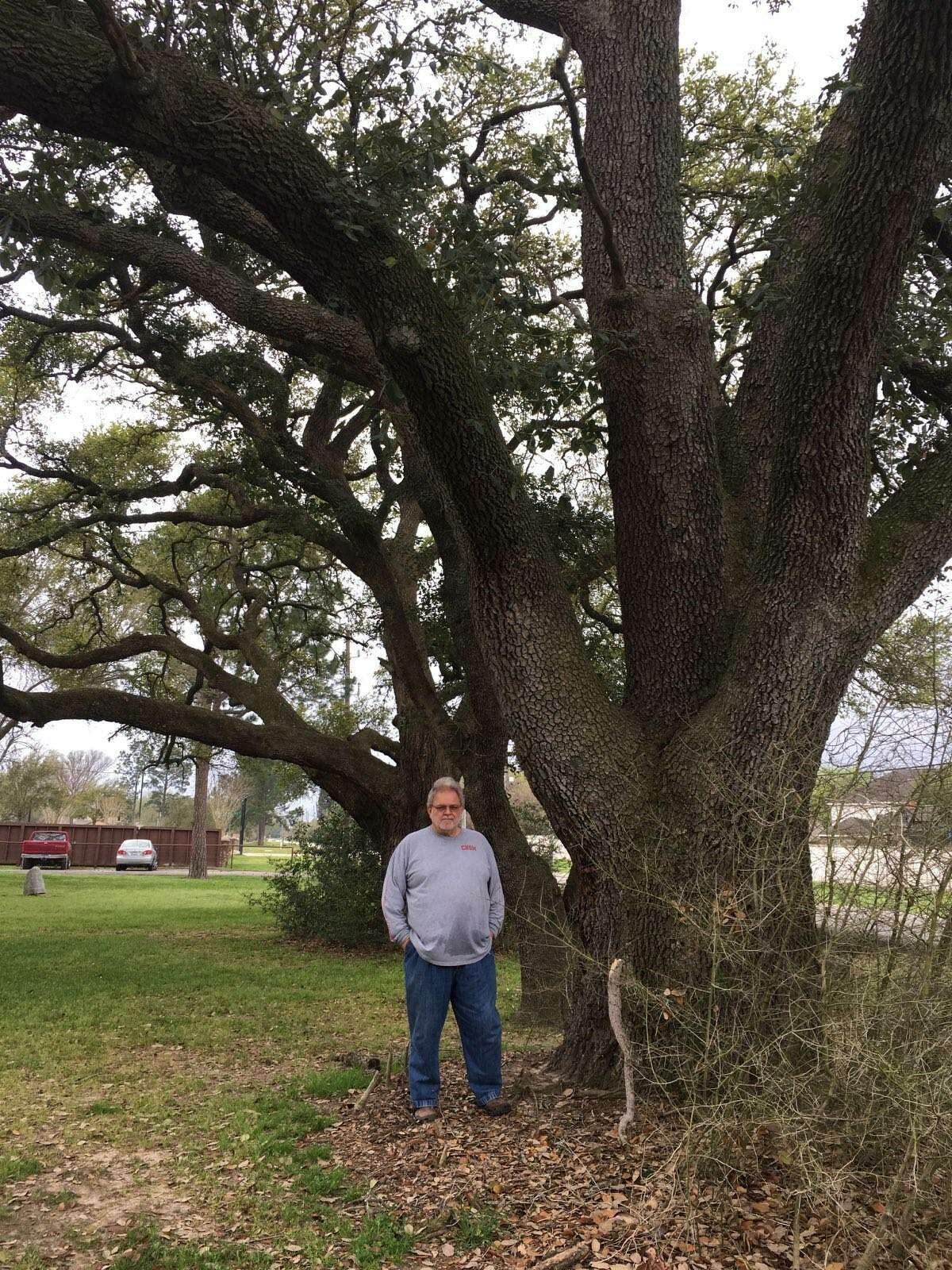 In March 2019, Robert Fontenot stands in front of Live oak trees that he said were planted in the early 1900s at the founding of the Roesner Homestead. His attempts to protect them from removal were unsuccessful. The North Fort Bend Water Authority went to court and successfully obtained a condemnation of a 20-foot wide section of his land at 24515 Roesner Road in which to place a water line.