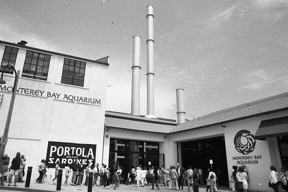 Local businesses suffer while Monterey Bay Aquarium packs them in, July 22, 1986