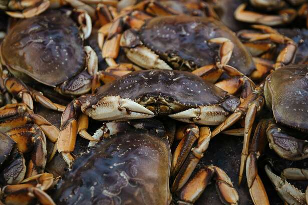 """Dungeness crab are seen in the back of Aaron Lloyd's ship, """"The Offshore"""" at Pier 45 in San Francisco, Calif. Wednesday, November 15, 2017."""
