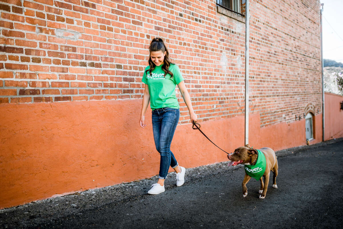 Customers of Rover.com can book a dog walker in a hour through Rover Now.
