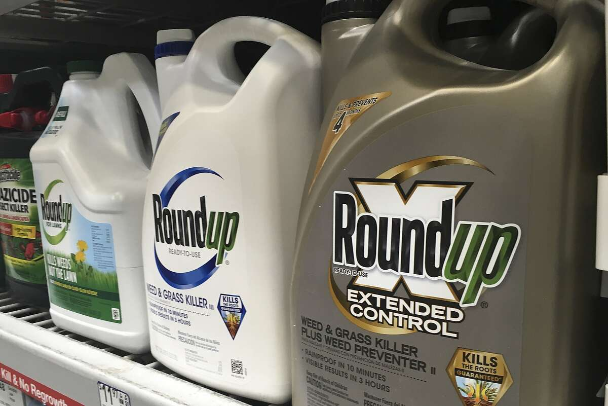 FILE - This Feb. 24, 2019 file photo shows containers of Roundup weed killer are displayed on a store shelf in San Francisco. A federal court jury has awarded $80 million in damages to Edwin Hardeman, 70, in a high-stakes trial over his claim that Roundup weed killer caused his cancer. The six-person jury in San Francisco returned the amount for Hardeman on Wednesday, March 27, 2019. The same jury previously found that Roundup was a substantial factor in his non-Hodgkin's lymphoma. (AP Photo/Haven Daley, File)
