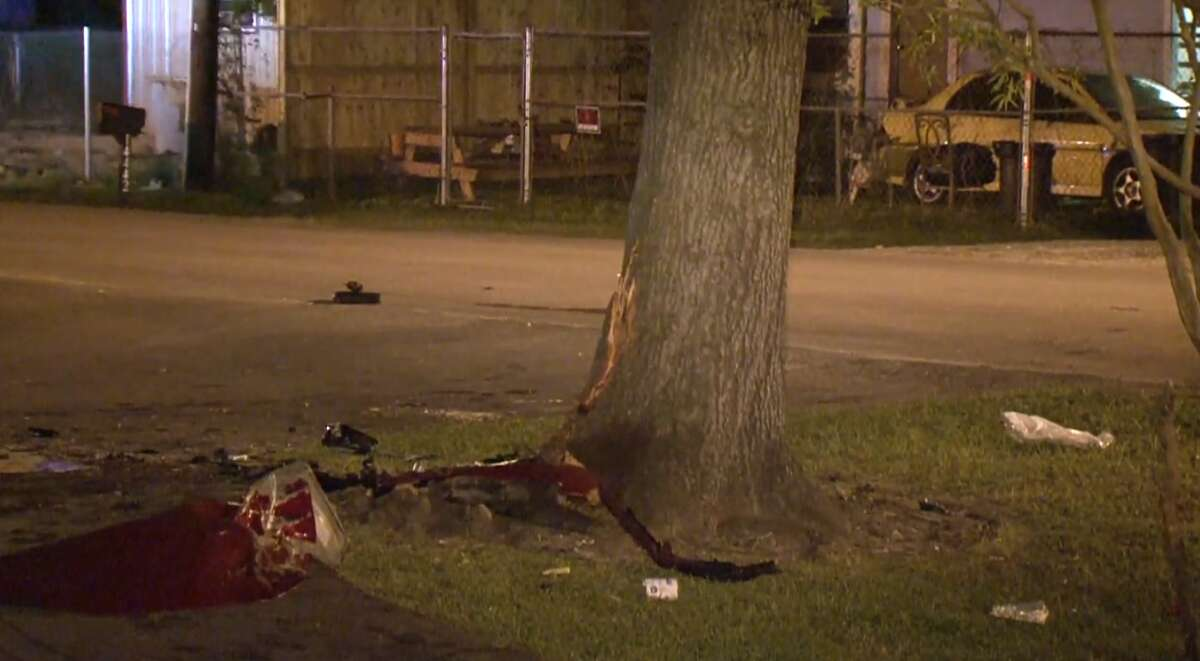 A woman and 8-year-old boy died late Wednesday after the woman drifted off Alderson Street and crashed into a tree in the Cloverleaf area. A teenage passenger was expected to survive.