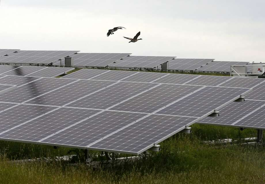 A 4,600-acre solar farm will soon make its way into Andrews County, initiated by Longroad Energy, which partnered with Facebook and Shell Energy North America. Photo: Paul Chinn, The Chronicle
