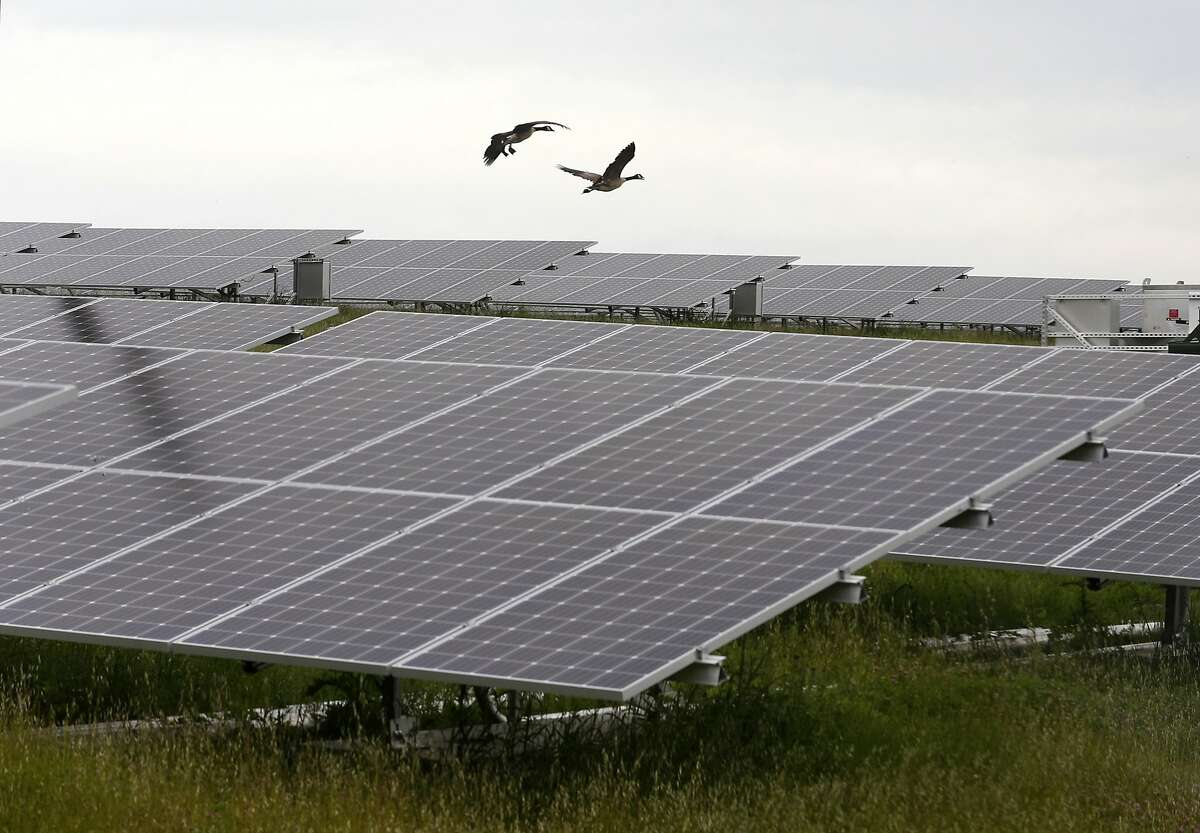 A 4,600-acre solar farm will soon make its way into Andrews County, initiated by Longroad Energy, which partnered with Facebook and Shell Energy North America.