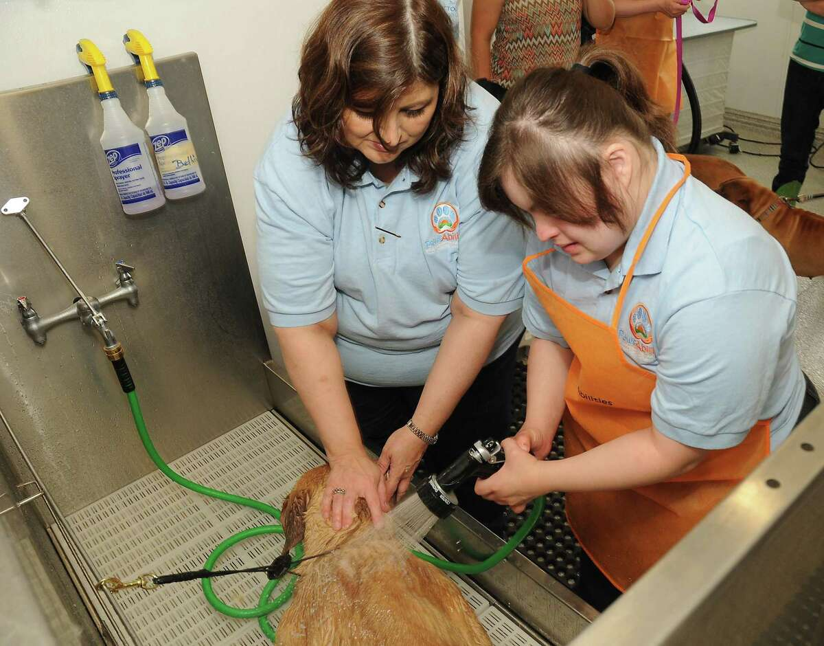 Cecelia Herrera,19, helps her mother, PawsAbilities founder Adriana Herrera, wash a dog during the PawsAbilities Charity Dog Wash at the Dog House Pet Salon on Washington Ave. Sunday March 24,2019. PawsAbilities is a nonprofit that teaches people with special needs how to care for and work with animals.(Dave Rossman Photo)