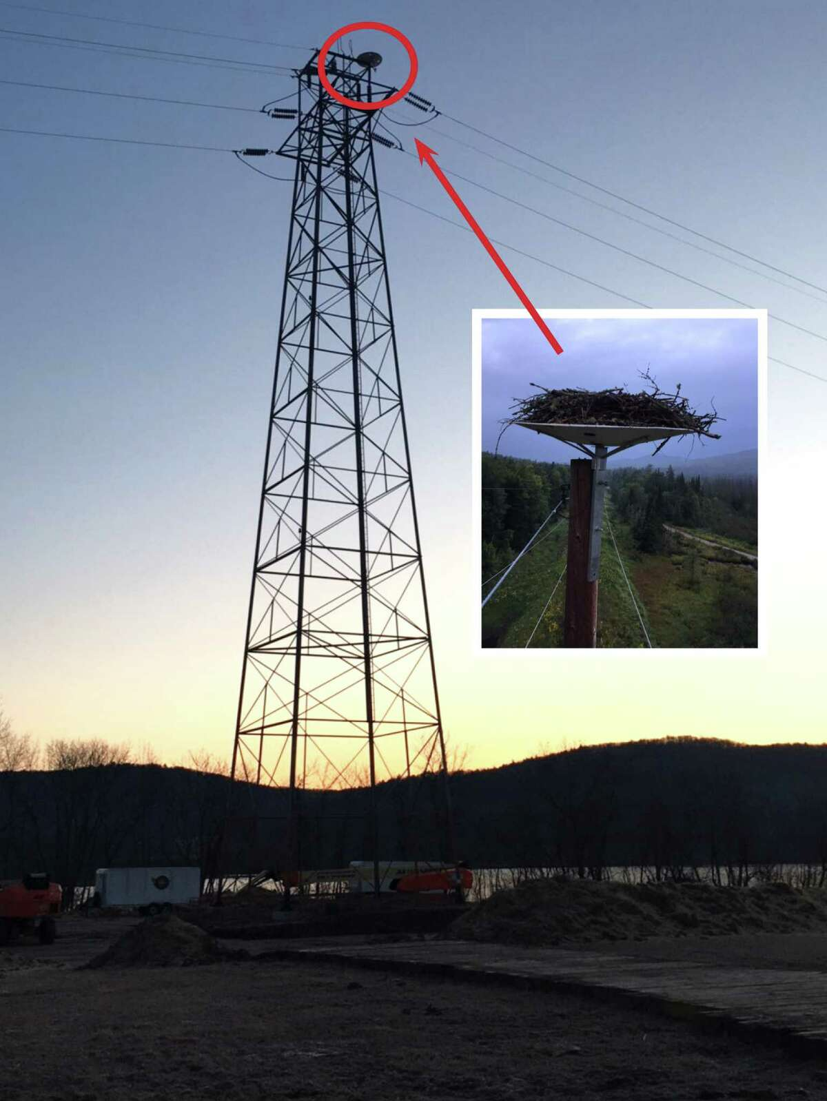 A finished Osprey platform sits above where the transmission wire connects to the tower. The inset photo is a detailed look at another nest relocated by National Grid on another set of power lines. National Grid has environmental scientists on staff to help with the process of moving the nests, which is done in consultation with the state Department of Environmental Conservation (DEC) and the U.S. Fish and Wildlife Service. (National Grid photos)