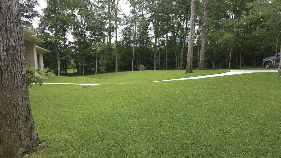 It's almost time to start the process of pampering our lawns.