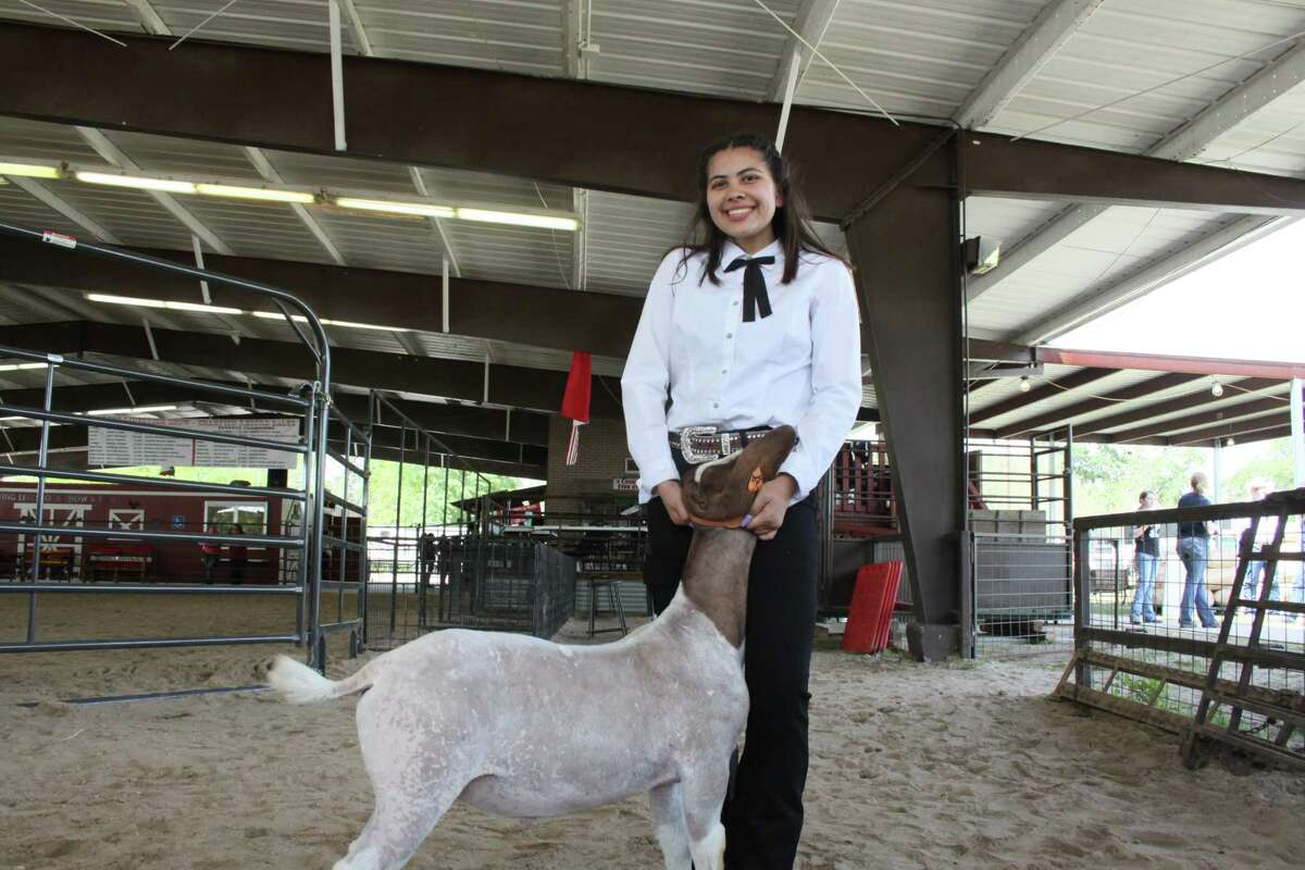 Reyna Hopkins, a sophomore at Spring High School, won grand champion at the 68th annual Spring ISD Livestock Show and Fair, poses with her goat, Fiji on March 28, 2019.