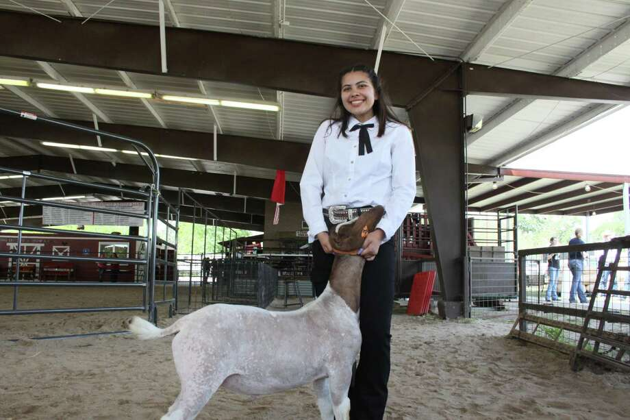 Reyna Hopkins, a sophomore at Spring High School, won grand champion at the 68th annual Spring ISD Livestock Show and Fair, poses with her goat, Fiji on March 28, 2019. Photo: Mayra Cruz