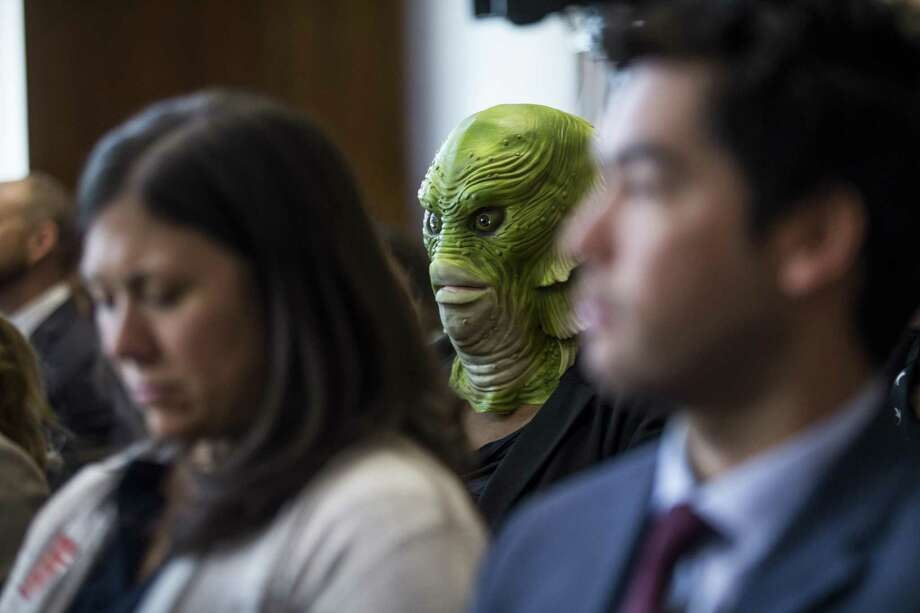 A demonstrator wears a Creature from the Black Lagoon mask as David Bernhardt, President Donald Trump's nominee to be Interior Secretary, testifies during a Senate Energy and Natural Resources Committee confirmation hearing, March 28, in Washington, DC. A reader says Trump will look a lot like the Creature once he's finished draining the swamp. Photo: Zach Gibson /Getty Images / 2019 Getty Images