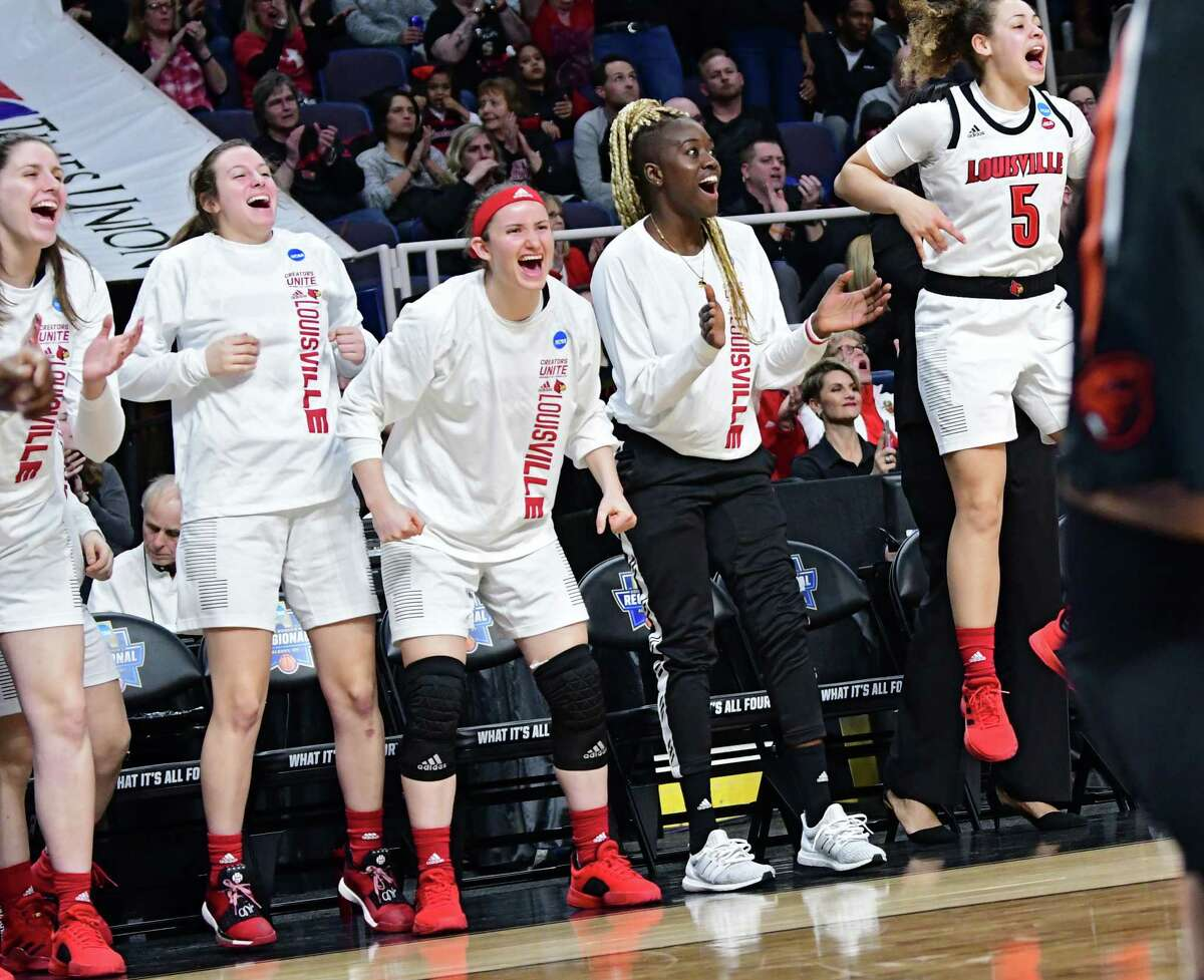 Louisville bench reacts after a play against Oregon State in a semifinal for the Albany Regional of the NCAA Women's Basketball Championship at the Times Union Center on Friday, March 29, 2019 in Albany, N.Y. (Lori Van Buren/Times Union)
