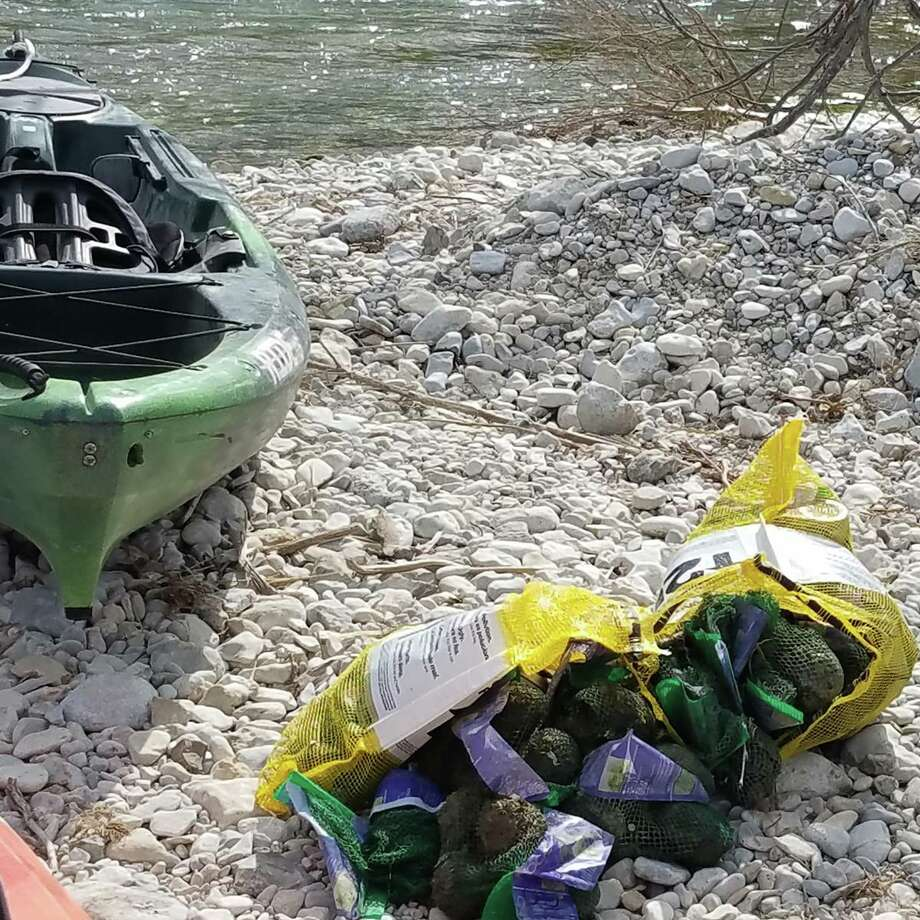 A truck crash spilled 42,000 lbs of avocados into the South Llano River near Junction, according to the Texas Parks and Wildlife. Photo: Texas Parks And Wildlife