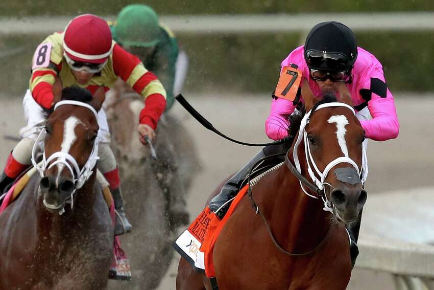 HALLANDALE, FLORIDA - MARCH 30: Maximum Security #7, ridden by Luis Saez, leads the field out of turn four during the Florida Derby at Gulfstream Park on March 30, 2019 in Hallandale, Florida. (Photo by Matthew Stockman/Getty Images)