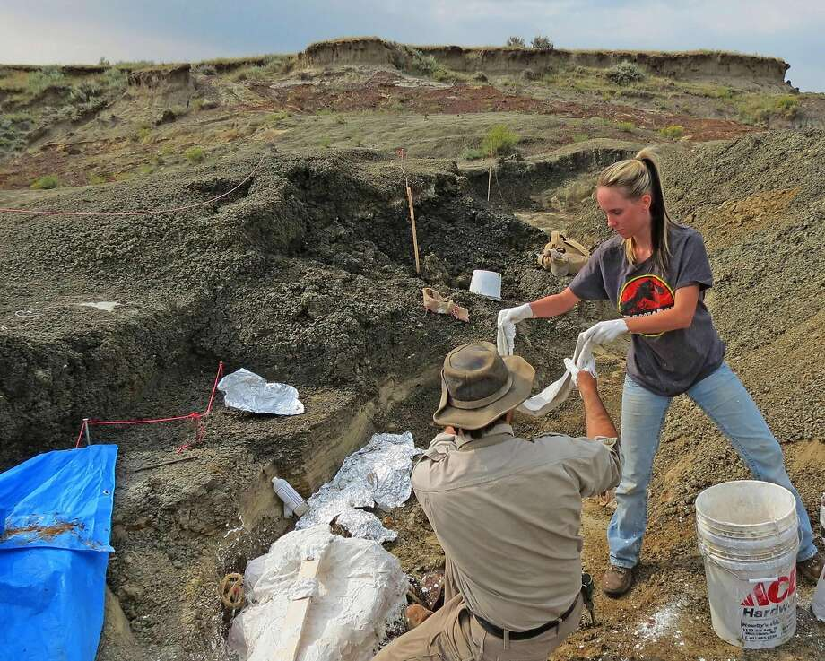 Researcher Robert DePalma (left) and Kylie Ruble excavate fossils last month near Bowman, N.D. Photo: Robert DePalma / AFP / Getty Images