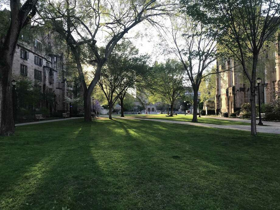 Yale University is among those under investigation in the college admissions scandal. Photo: Matt Ormseth / TNS / Hartford Courant